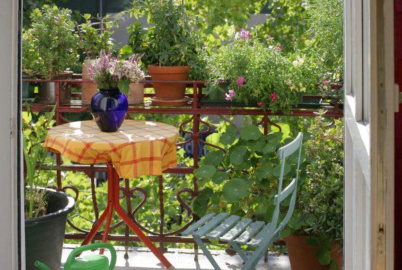 Zubehör für Ihren Terrassen-Sommer